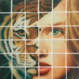 Рисунок квадраты клеевой девушка тигр 12х16см  (Штука)