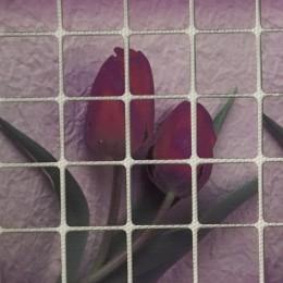 Рисунок квадраты клеевой тюльпаны 17х11см  (Штука)