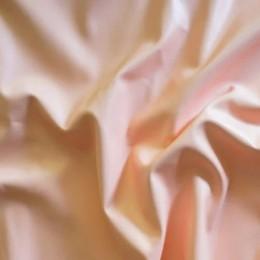 Ткань кожа стрейч светлый персик (метр )