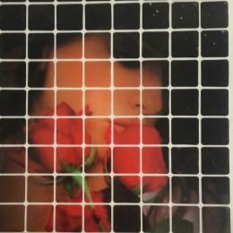 Рисунок квадраты клеевой девушка роза 12х16см  (Штука)