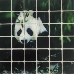 Рисунок квадраты клеевой панда 15х13см  (Штука)