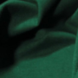 Ткань футер двунитка бутылка (метр )